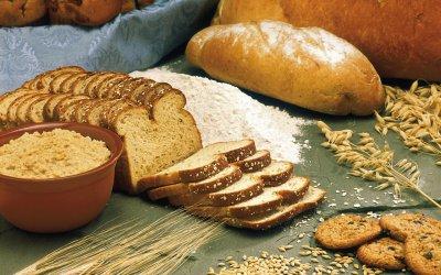 Was ist eine Prüfung der Lebensmittelempfindlichkeit?